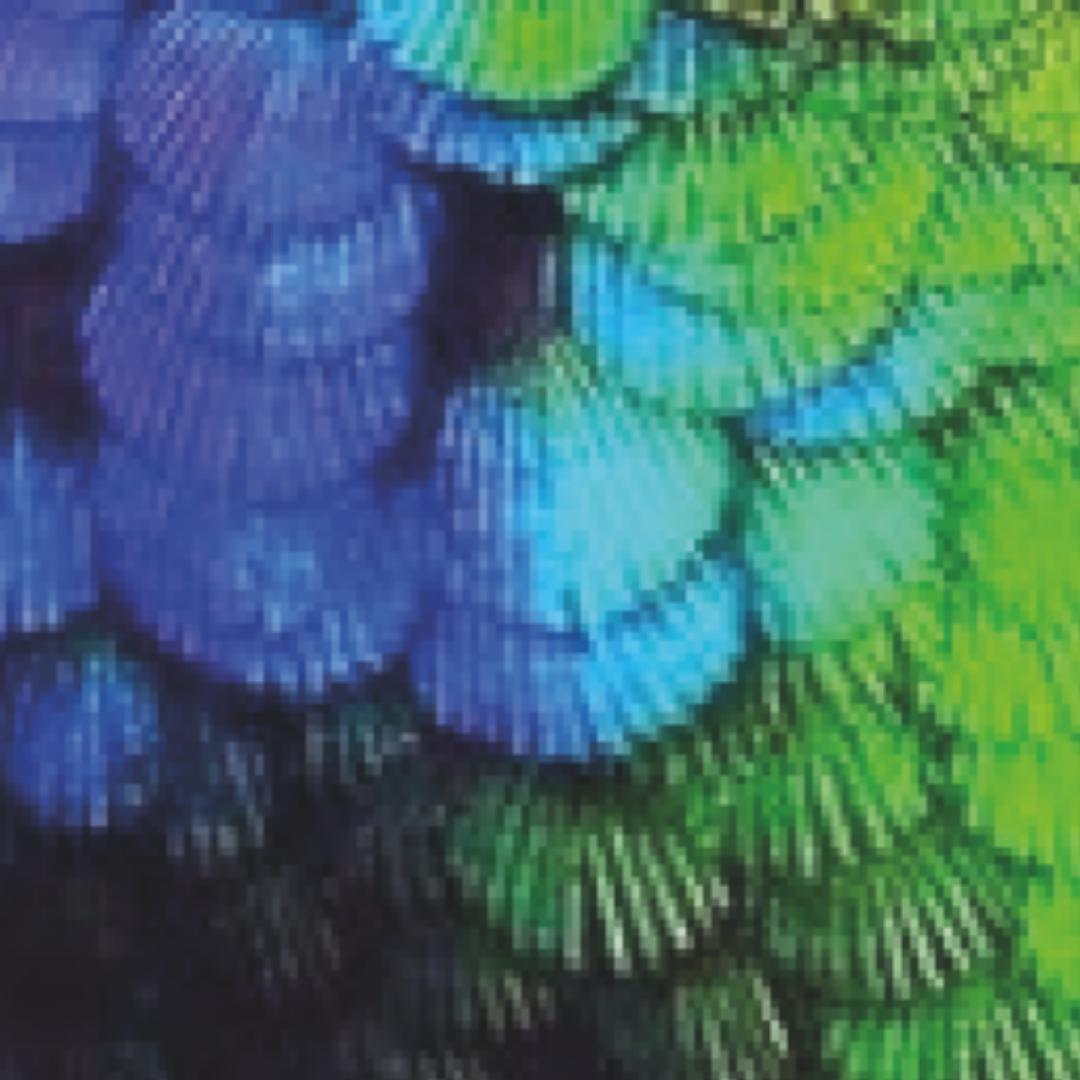 Pixel plumage